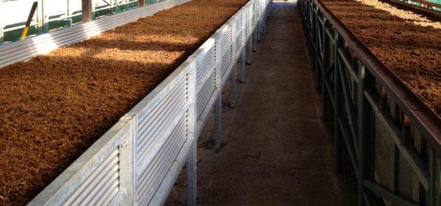 Tham khảo mô hình nuôi trùn quế hiện đại ở nước bạn